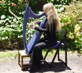 26 string harp being played