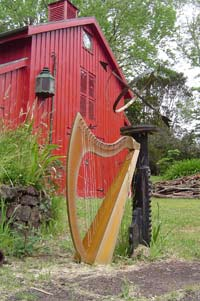 gold hire harp by barn